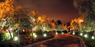 LEDtronics-Ladera_road300