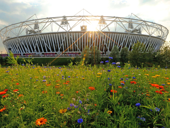 Cooley OlympicStadium