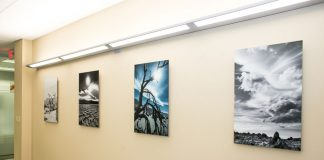 Mactac MTM wall graphics Artmill