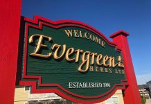 mayfair signs evergreen herbs hdu